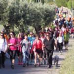 15ª Caminada Popular de Les Franqueses del Vallès